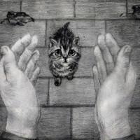 «МЯУ-акция» в Гродненском филиале БИП