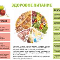 Правильное питание — залог здоровья и красоты