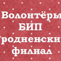БЛАГОТВОРИТЕЛЬНАЯ АКЦИЯ «Новогодняя елка желаний»